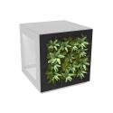 Face végétale pour poele a bois cube